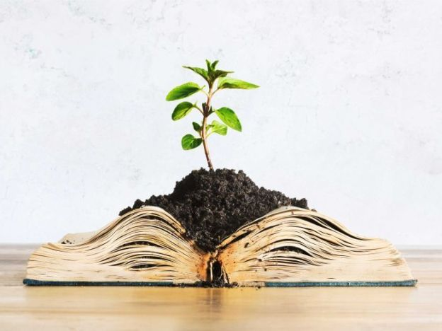 Photo tree growing from book
